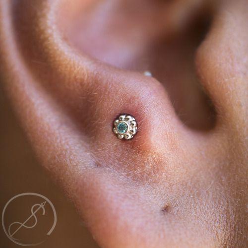 piercing anti tragus 1 - tragus