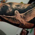 portada tatuajes palomas 150x150