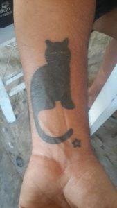 tatuajes de gatos en la muñeca gatitos 12 169x300
