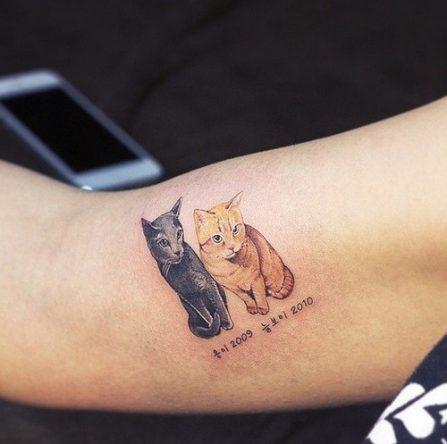 tatuajes-de-mascostas-originales-9