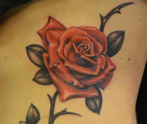 tatuajes de rosas rojas 3 - tatuajes de rosas
