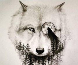 tatuajes-lobos-diseños (2)