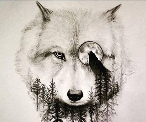 tatuajes lobos diseños 2 - tatuajes de lobos