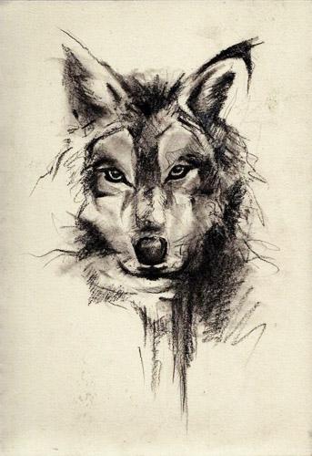 tatuajes lobos diseños 5 - tatuajes de lobos
