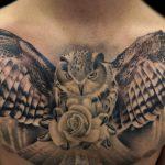 portada tatuajes lechuza buho 150x150