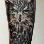 tattoo lechuza buhos brazos 5 150x150
