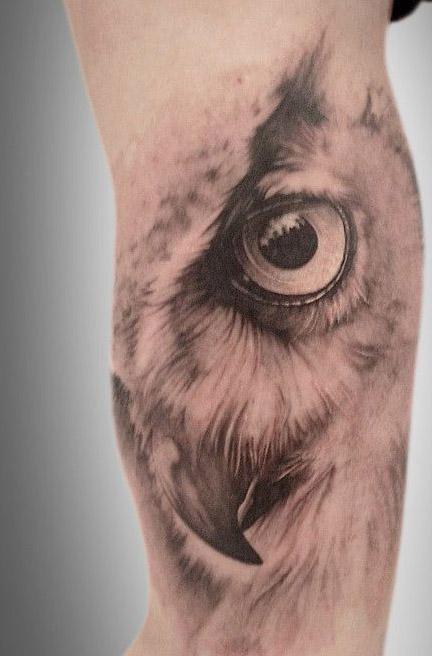 tatuajes buhos lechuzas hombre brazo tattoo 4 - tatuajes de búhos