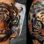 tatuajes tigres bengalas 2 150x150