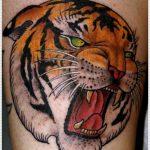 tatuajes tigres bengalas 4 150x150