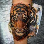 tatuajes tigres bengalas 5 150x150