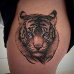 tatuajes tigres blancos 3 150x150