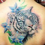 tatuajes tigres blancos 4 150x150