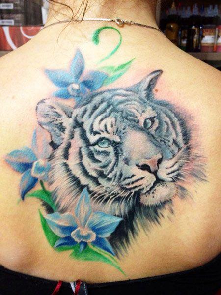 tatuajes tigres blancos 4 - tigres