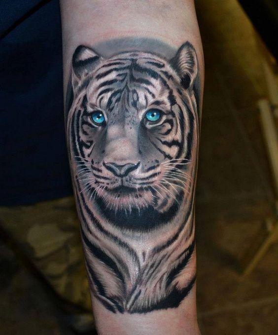 tatuajes tigres blancos 5 - tigres