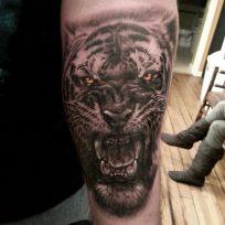tatuajes-tigres-brazo-hombro (3)