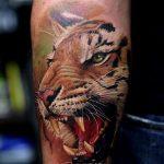 tatuajes tigres brazo hombro 5 150x150