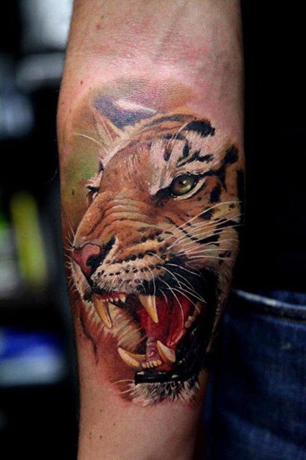 tatuajes tigres brazo hombro 5 - tigres