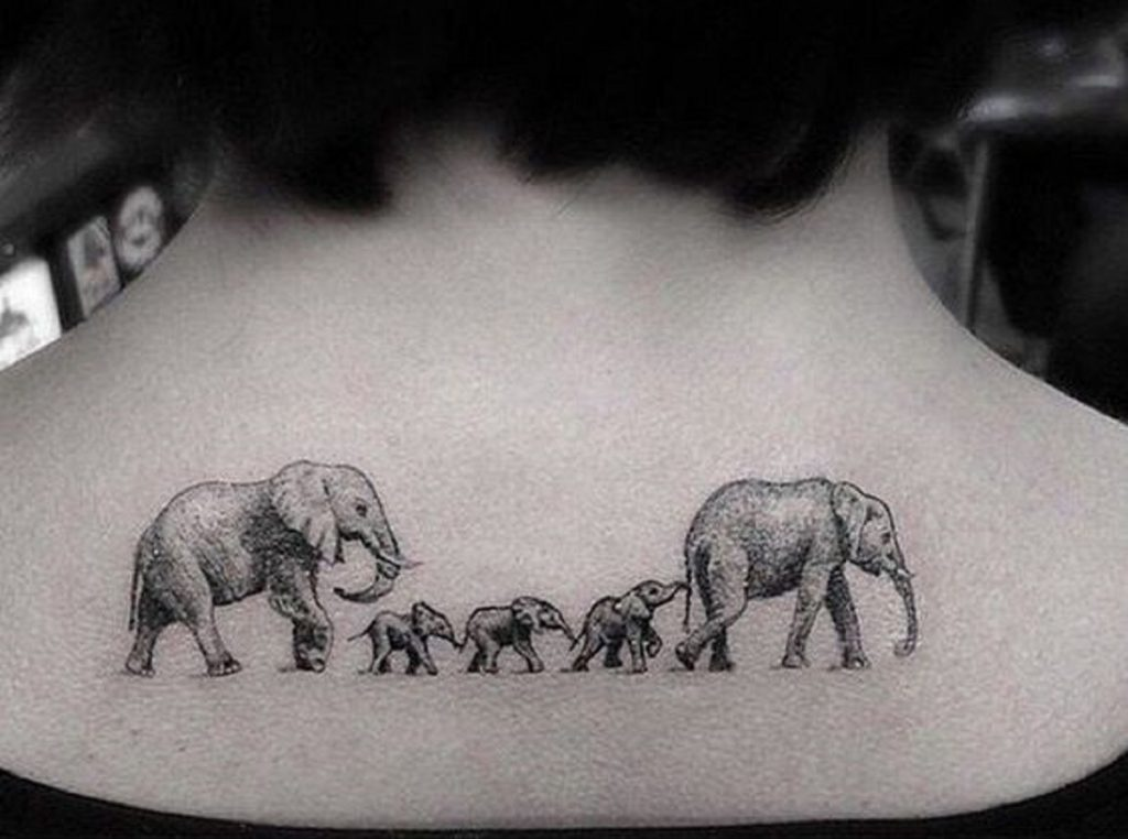 portada tatuajes de elefantes 1024x762