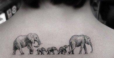 portada tatuajes de elefantes 390x200