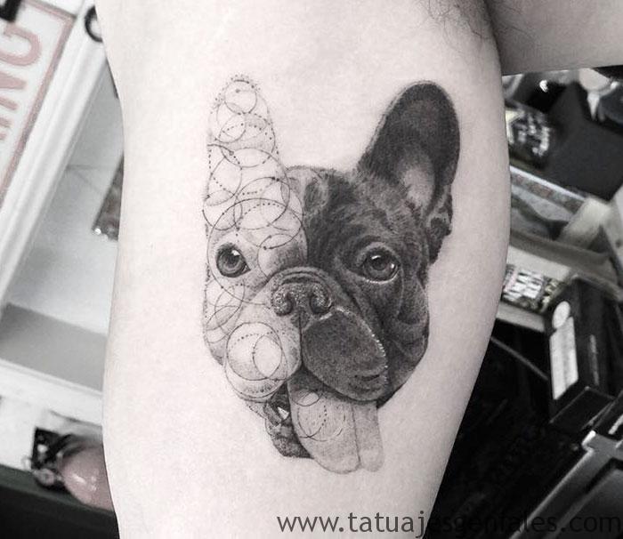 tatuajes perros pitbull 3