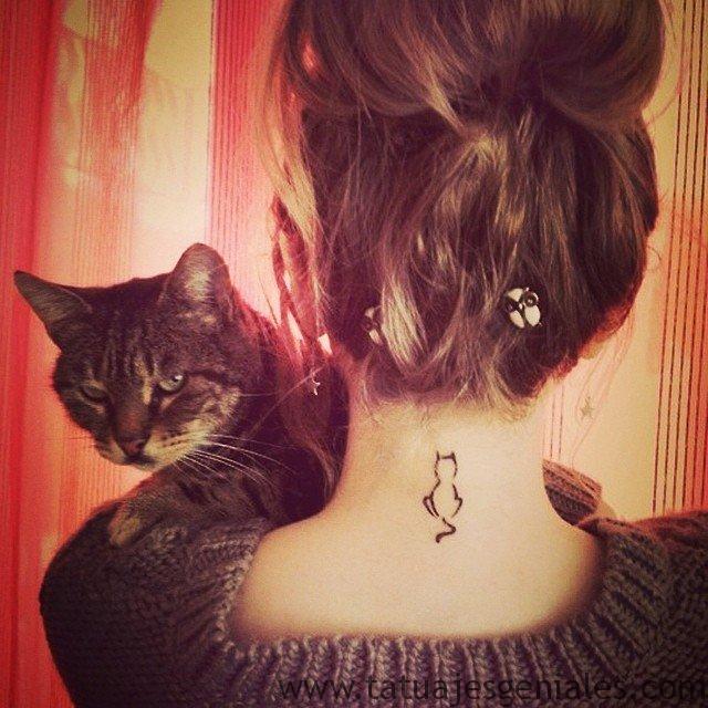 tatus diminutos gatos animales 1