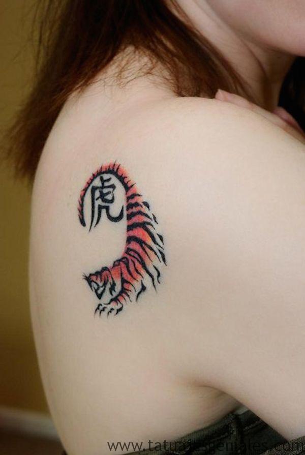 tatus diminutos gatos animales 4 -