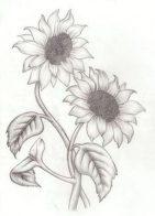 diseños-de-girasoles (2)
