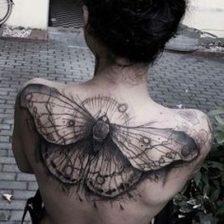 mariposas en la espalda (4)