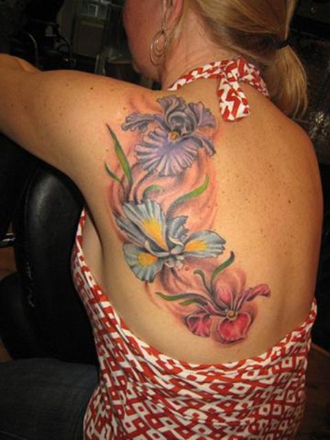 orquidea flores 10