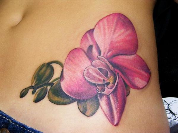 orquidea flores 3