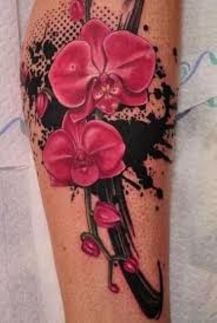 orquidea flores 5