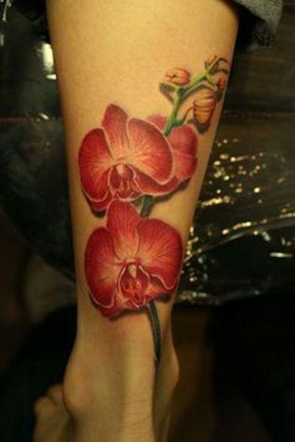 orquideas 3d 7