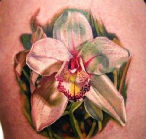 orquideas 3d 9