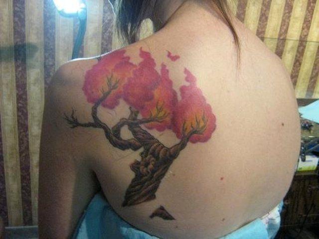arboles a color 1