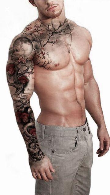 hombro y brazo 1