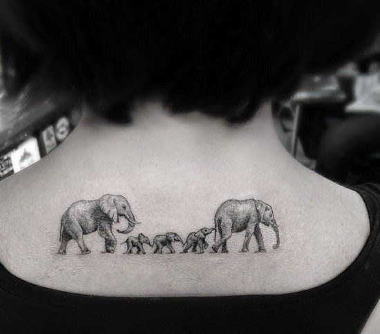familia de elefantes 2