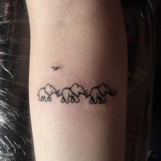 familia de elefantes 3