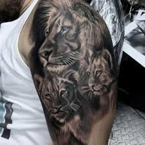 de leones 4