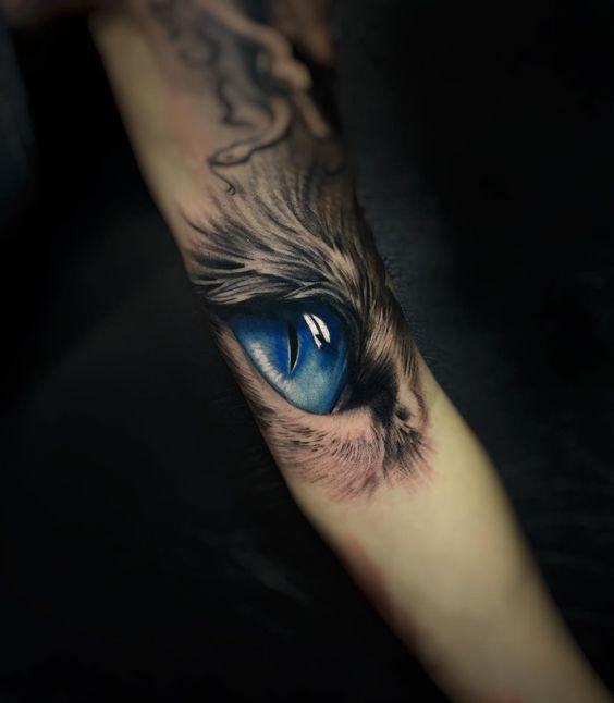 ojos de gato 6