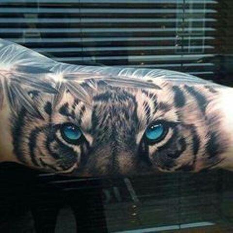 ojos de tigre 1