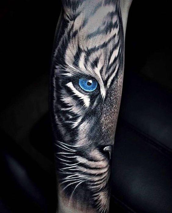 ojos de tigre 5