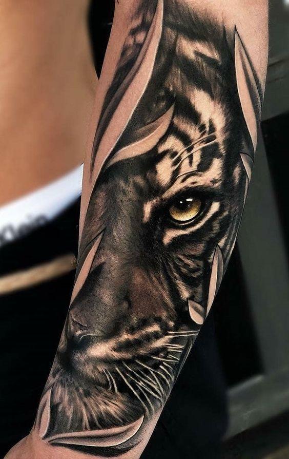 ojos de tigre 6