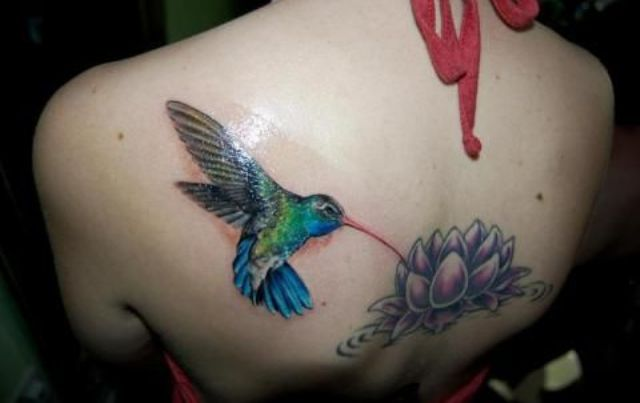 colibri en la espalda 4 - tatuajes de colibrí