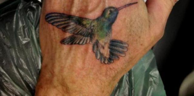 colibri en la mano 3