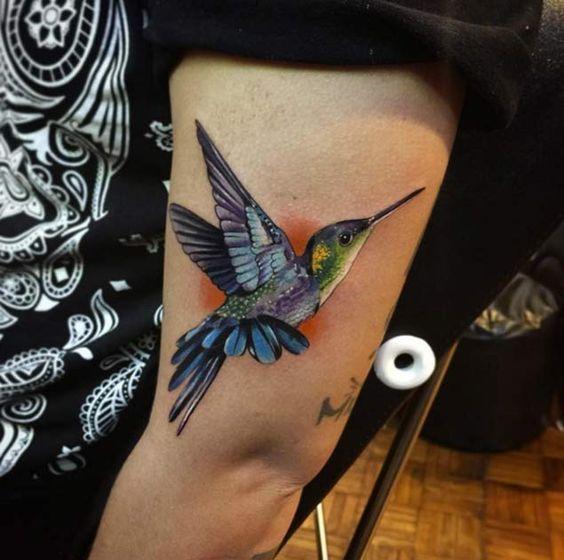 colibri para hombres 2